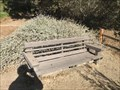 Image for Wooden Bench (Large) - Laguna Niguel, CA