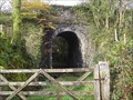 Image for Granite Railway Bridge, near Burntown, Mary Tavy, Devon UK