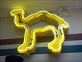 Image for Camel Sign - Dort Mall - Flint,MI