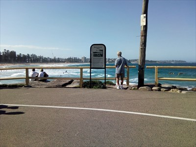 The view of Manly Beach from this Dedicated Bench.