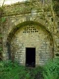 Image for Moseley Green Tunnel, Forest of Dean, UK