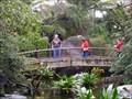 Image for River Valley Aviary Bridge - Jacksonville, FL