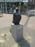 Image for Winkelende vrouw - Olst, NL