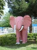 Image for Pink Elephant - Las Vegas, NV