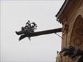 Image for Wawel Cathedral Gargoyles  -  Krakow, Poland