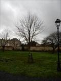 Image for arbre laicite - Fontenay le Comte, France