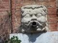 Image for Old Museum Building Gargoyles - Pisa, Italy