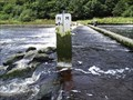 Image for River Gauge, Lopwell Dam (South East Side)