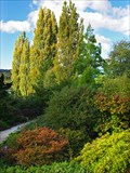 Image for The Tasmanian Arboretum - Eugenana, Tas