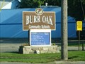 Image for Burr Oak School, Burr Oak, Michigan