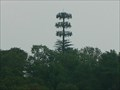 Image for Stringers Ridge Tree Tower - Red Bank TN