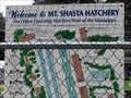 Image for Mount Shasta Fish Hatchery - Mount Shasta, CA