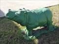 Image for Green Hippo - Hutto, TX