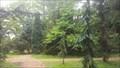 Image for Alnarp arboretum