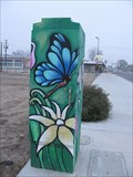 Image for Butterflies and Flowers - Bakersfield , CA