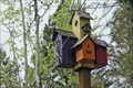 Image for Birdhouse Built for Five - Sandpoint, Idaho