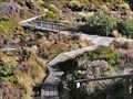 Image for Silica Rapids Boardwalk, Mt Ruapehu. North Is. New Zealand.