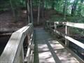Image for Foot Bridge - Chenango Valley State Park, Chenango Bridge, NY