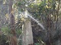 Image for Styx trig - Styx River State Forest, Jeogla, NSW