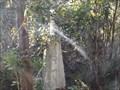Image for Styx trig - Styx River State Forest, Jeogla, NSW