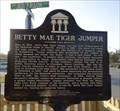 Image for Betty Mae Tiger Jumper