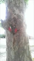 Image for Eating Tree - Dessau - ST - Germany
