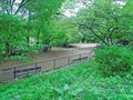 Image for Morningside Park Dog Run - Manhattan, New York