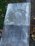 Image for Lt. Dan Throop - Judd Cemetery - Saline, Michigan
