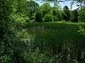 Image for The University of Toledo's Stranahan Arboretum