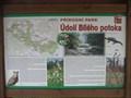 "Image for Prirodni park - Udoli Bileho potoka - ""U Deviti Krizu"", Czech Republic"