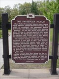Image for The Passenger Pigeon Historical Marker