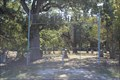 Image for Bethel Cemetery - Greenville, TX
