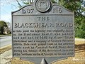 Image for The Blackshear Road - WPA  87 F-6 - Dodge County