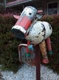 Image for Bull Mailbox - Stroud, NSW, Australia