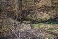 Image for Carver Branch Spring – George Washington Carver National Monument – Diamond, Missouri