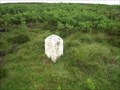 """Image for Milestone near """"Coldwell Spring"""" on B6282 to Woodland, County Durham"""