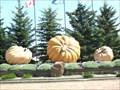 Image for Pumpkin Park - Smoky Lake, Ab