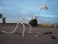 Image for Fred Flintstone's Dinosaur Skeleton