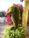 Image for Sea Horse (Topiary) - SeaWorld, Orlando, Florida, USA.