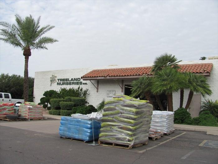 Treeland Nursery Mesa Arizona Image