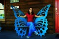 Image for Butterfly Chair Sautee, GA