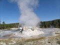 Image for Grotto Geyser - Yellowstone N.P., Wyoming