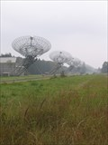Image for Westerbork Synthesis Radio Telescope