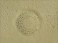 """Image for BM0251 - """"F 311"""" bench mark disk - Giddings, TX"""