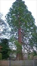 Image for Oak Bank Cottage Redwood, Grasmere