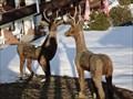 Image for The Deers - Jungholz, Austria, TIR