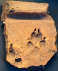 Image for Empeintes d'animaux, Bibracte, St Léger sous Beuvray, France