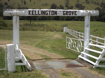 The wooden post entry arch, cattle grid, and Wagon Wheels swinging gate of the property at #526 Chichester Dam Road, Bendolba. 1240, Sunday, 27 November, 2016