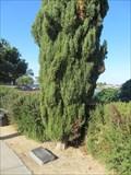 Image for John Van Berkem - Alameda, CA