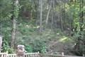 Image for Eagle Mountain Sanctuary Binocular #1